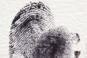 odciska palca 2